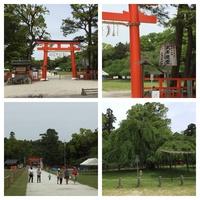 上贺茂神社1.jpg