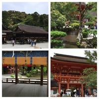 上贺茂神社3.jpg