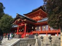 八幡宫5.jpg