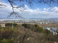 八幡宫6.jpg
